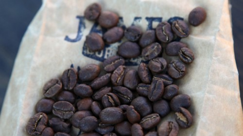 Motogeo Coffee coming soon!